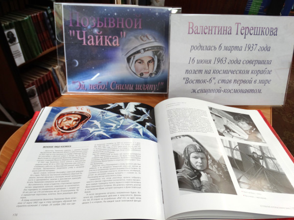 Книжная выставка Позывной Чайка