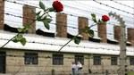 11 апреля – Международный день освобождении узников фашистских концлагерей