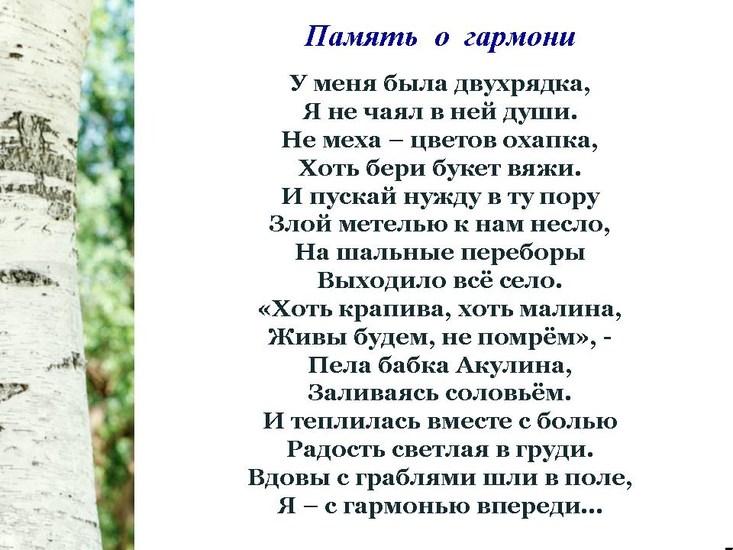 v15_pic07