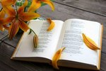 21 марта – Всемирный день поэзии