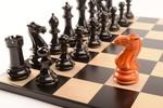 20 июля — Международный день шахмат (с 1966 г. по инициативе Всемирной шахматной федерации (ФИДЕ).