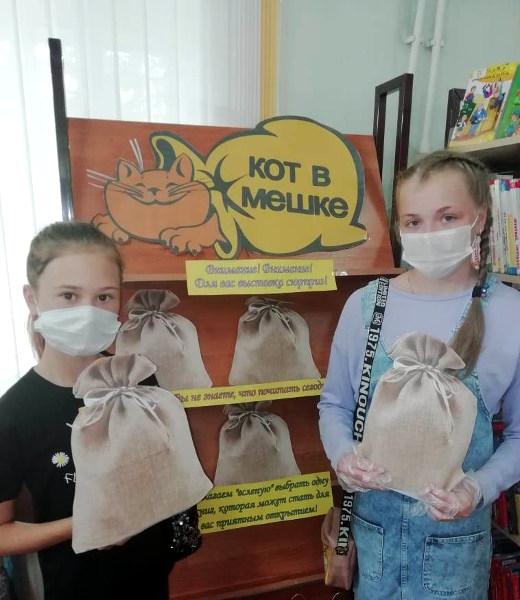 Книжная выставка Кот в мешке